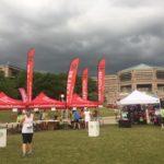 Sunset Half Marathon, 10K and 5K run in Hoffman Estates